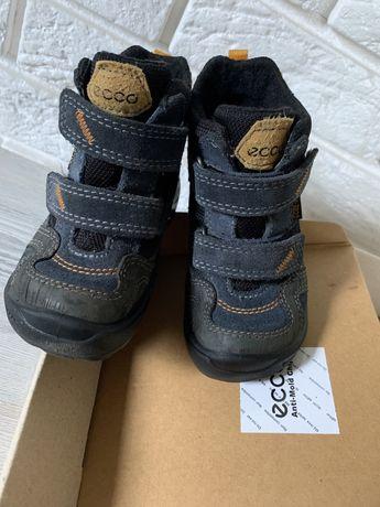Ecco ботинки 24 размер