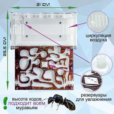 "Муравьиная ферма формикарий Standart ""дерево"" для муравьев Жнецов"