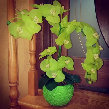 Латексная орхидея