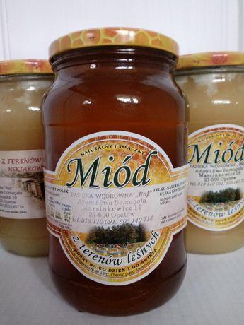 Miód i produkty pszczele najwyższej jakości