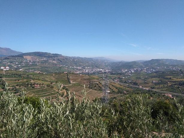 Casa T4 em Cambres (Lamego) – Vista magnífica de rio Douro e vinhas