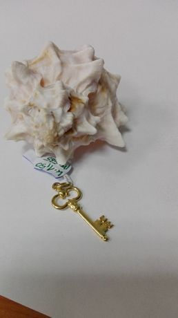 Złoty wisiorek w kształcie kluczyka, próba 585