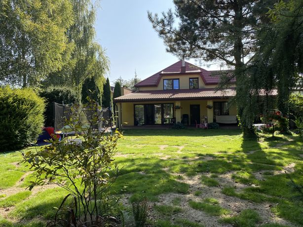 Dom Andrzejów plus dodatkowe mieszkanie