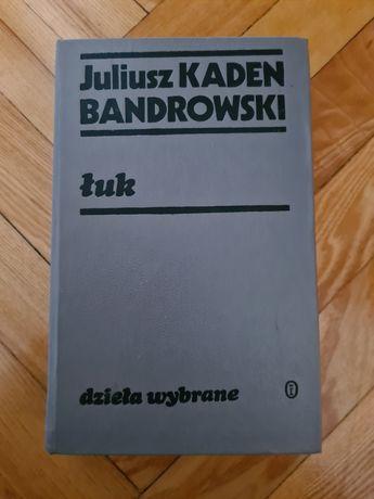 Janusz Kaden Bandrowski - Łuk 1981