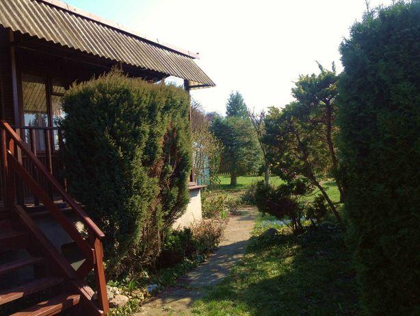 Działka ROD z domkiem, atrakcyjne położenie obok Lasu Łagiewnickiego