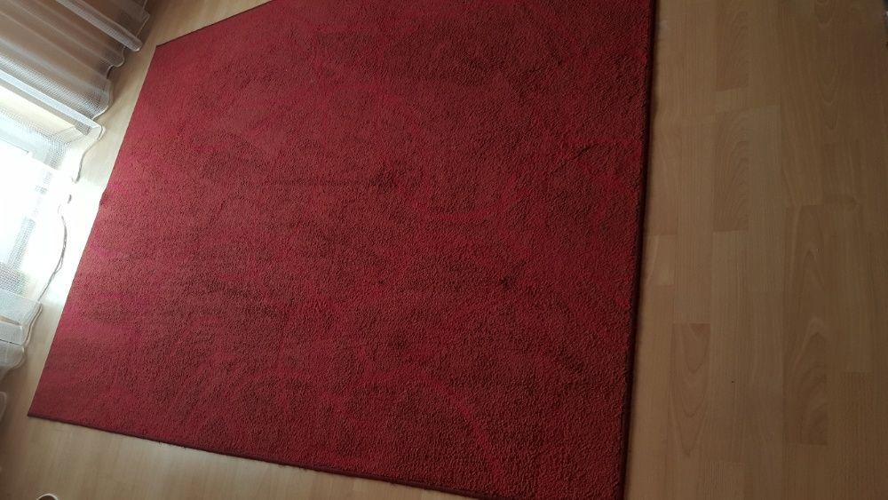 Dywan dywany wykładzina Kielce - image 1