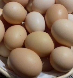 jajka kurze wiejskie