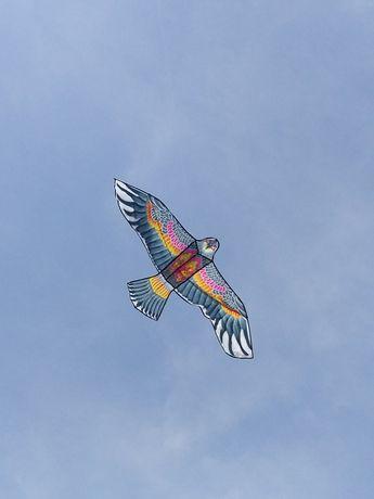 Орел Сокол воздушный змей большой