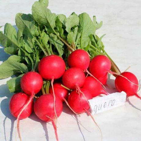 Семена редиса Диего 25000с (калибр. сем.) 2.75-3.25мм
