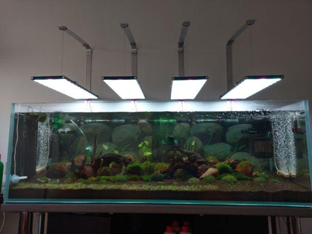 Akwarium 450 l Full Optiwhite z szafką i pełnym wyposażeniem