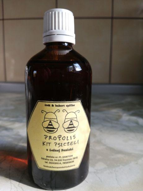 Propolis-kit pszczeli