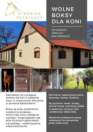 Hotel dla koni Petrykozy
