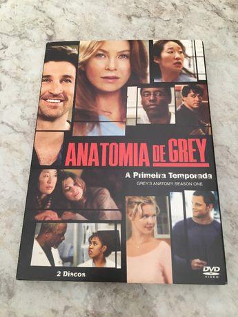 DVD Anatomia de Grey 1ª Série