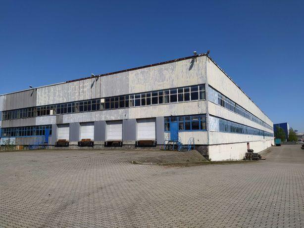 Hala produkcyjno - magazynowa - 7.500 m2 - Łódź ul. Lodowa