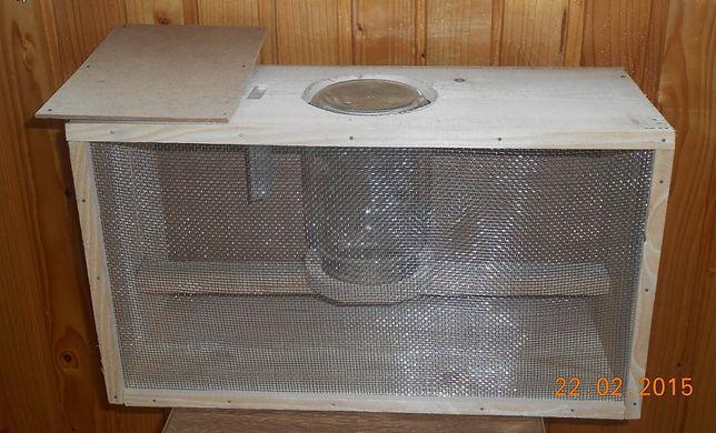 Безсотові бджолопакети поштою (карпатка)