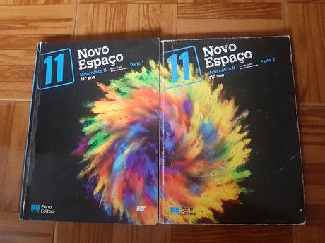 Novo Espaço 11 - Matemática B