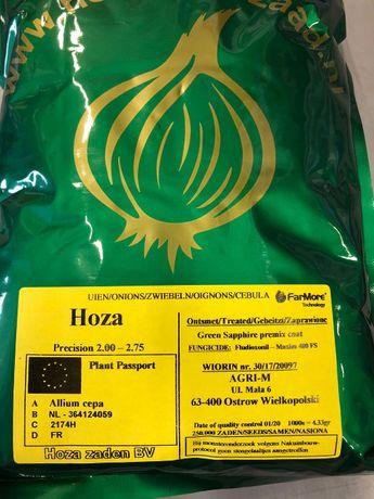 Nasiona cebuli HOZA,DONNA,ROMY(czerwona) Agri-m.pl 250 tyś naś(prec)