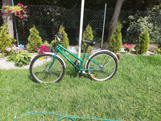 Rower funbike 24