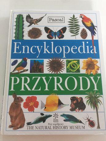 Encyklopedia Przyrody pascal
