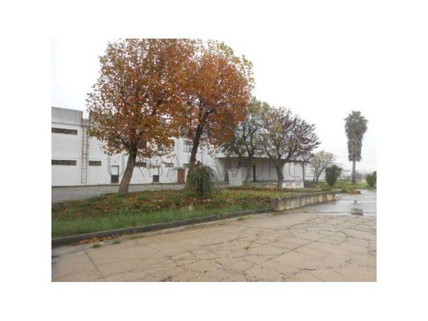 Armazém Industrial - 1065m2 - terreno 10.00m2 - Carregado...