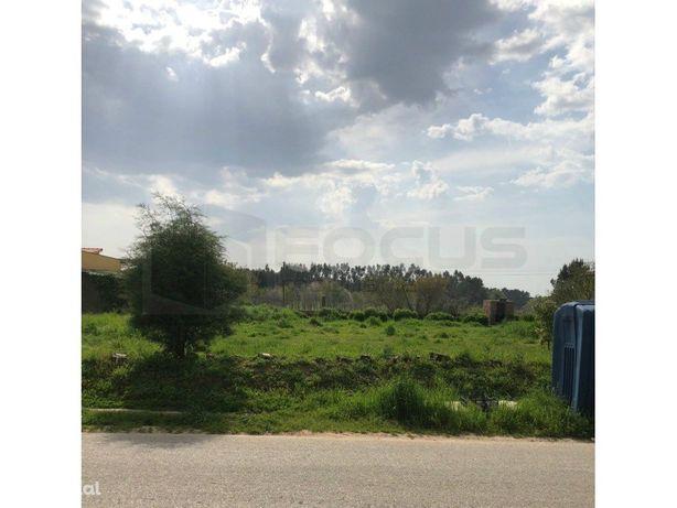 Terreno em Albergaria-a-Velha