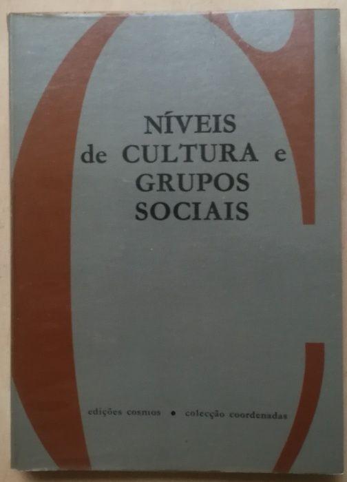 níveis de cultura e grupos sociais, edições cosmos Estrela - imagem 1