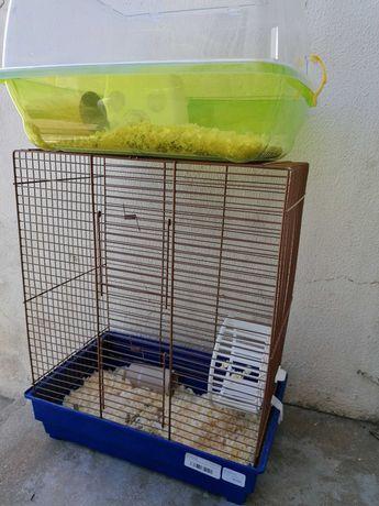 Gaiola com oferta de hamsters