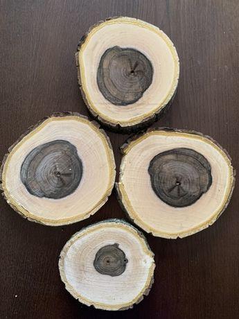 Plastry drewna orzech wloski, jabłoń, dab, grusza, oliwnik