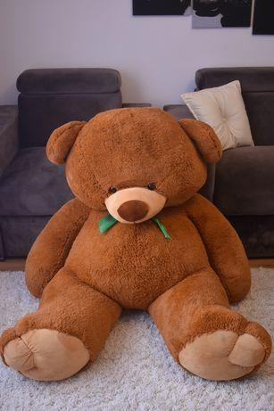 Ведмідь, м'яка іграшка.