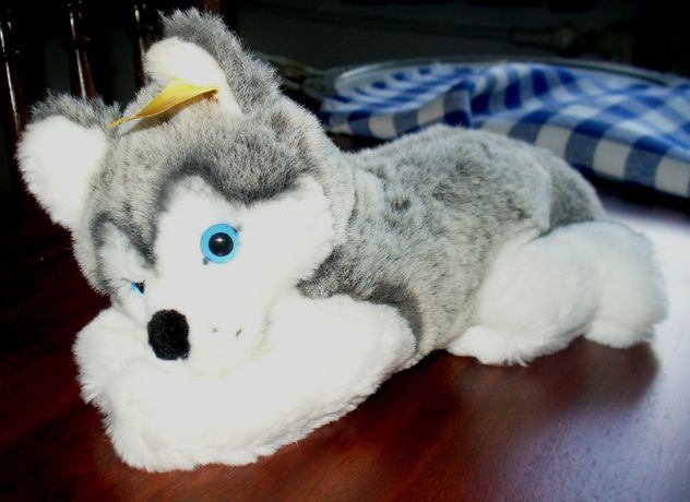 Siberian Husky piesek STEIFF