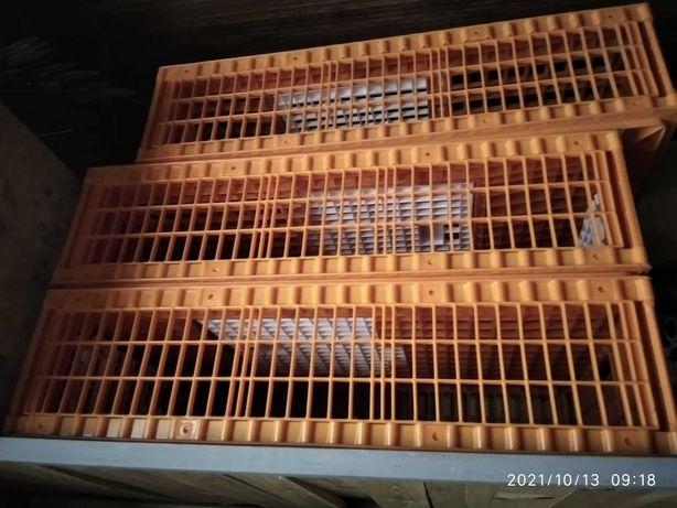Продам ящики для перевозки птицы новые, а также инкубатор.