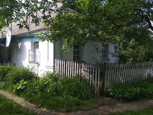Будинок, земля, садок (0.7 га) с.Карабчиїв 150 км від Києва