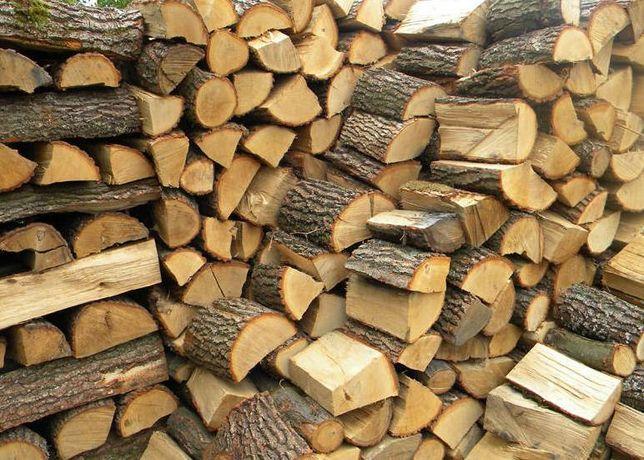 Drewno kominkowe + TRANSPORT
