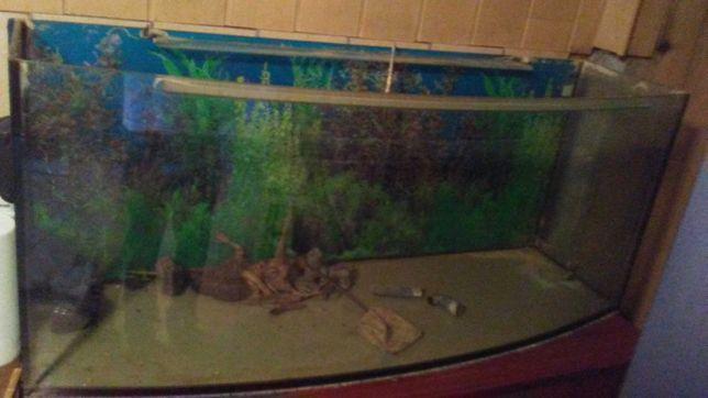 Akwarium profilowana 240l