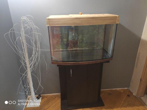 Akwarium Aquael 97L z szafką