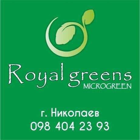 Микрозелень, микрогрин, microgreen 20грн за 100грамм