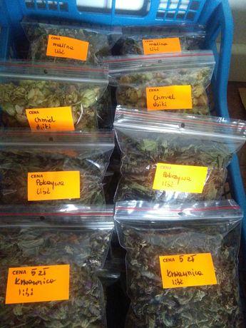 Pokrzywa i inne zioła