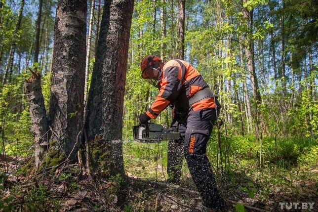 Лісозаготівельні роботи ,ВЫРЕЗКА,ВЫРУБКА,ВЫВОЗКА