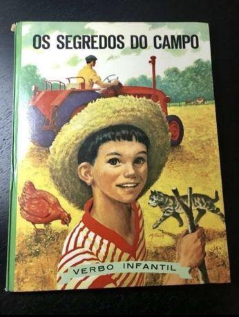 Os segredos do campo (nº 47). Anita