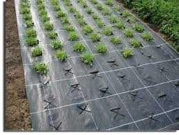 Агротканина плетена, чорна, щільна. агрополотно, агров агроткань Чехия