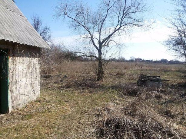 Продам дом в Орловщине. Участок 25 соток. РАССРОЧКА. Без комисси