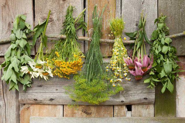 Лекарственные травы (лікарські трави) ОПТОМ от 1 кг.