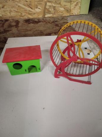 Kołowrotek i domek dla gryzonia