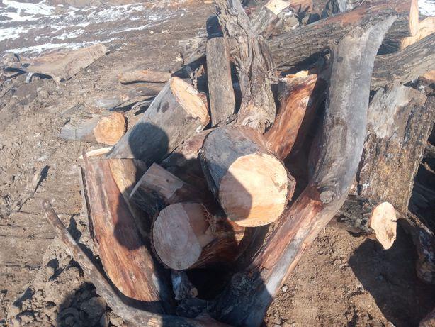 Продам дрова разные