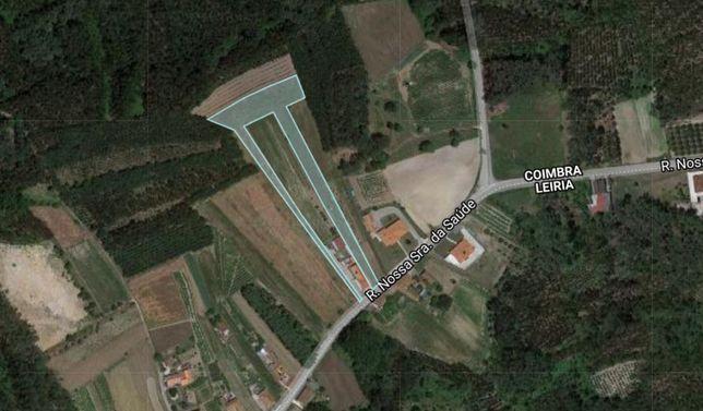 Terreno localidade Cipreste, 6000 metros quadrados