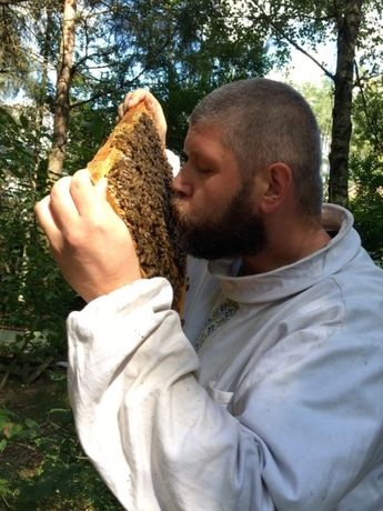 Matki pszczele Włoszka, Krainka, Buckfast, AMM, Elgon, Primorski VSH