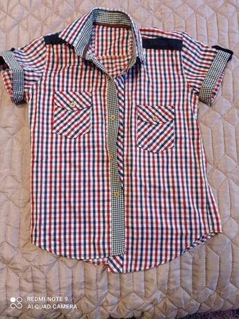 Koszula koszule eleganckie 122 128