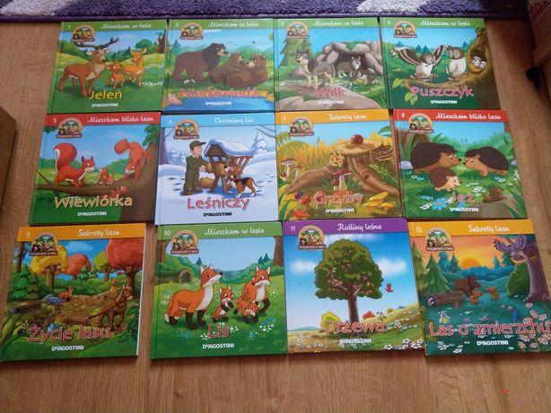 Książki książeczki dla dzieci 12 szt zwierzątka Przyjaciele z lasu