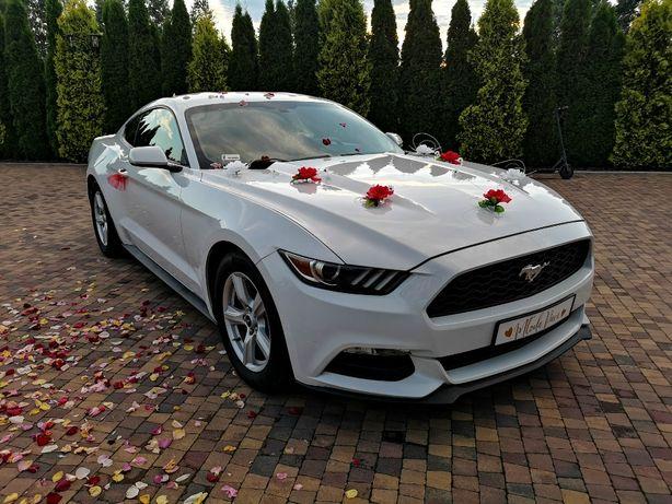 Ford Mustang VI do ślubu, Łódź