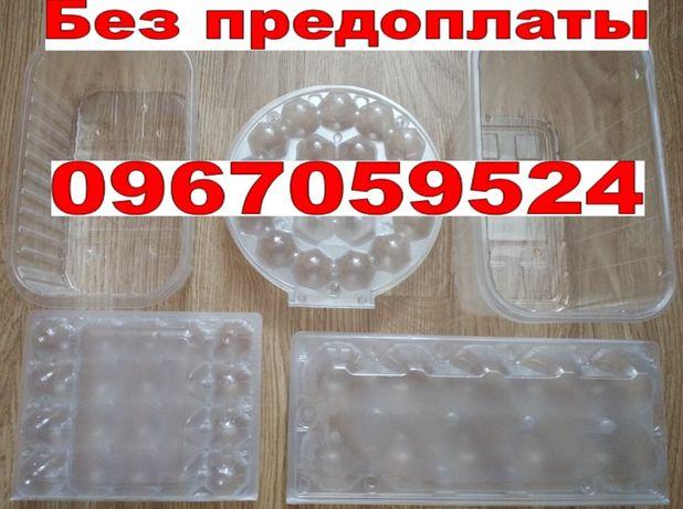 Упаковка на куриные перепелиные яйца Контейнер лоток для ягод пинетка